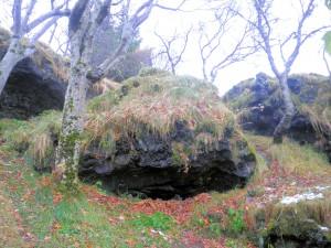 Голям камък-елфска къща в The elf garden Фото: Лени Ханджийска/Евромегдан
