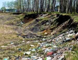 Разпадаща се гора и издигаща се бариера от боклуци. Сметище - началото. Фото: Преслава Цачева